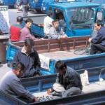 Водители грузовиков в ожидании заказа
